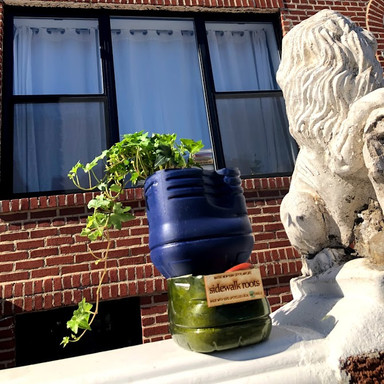 Sidewalk Roots - upcycling community business waste