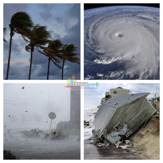 How To Stay Safe & Sane In A Hurricane