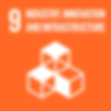 TheGlobalGoals_Icons_Color_Goal_9.png