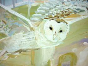 Owl in My landscape Detail