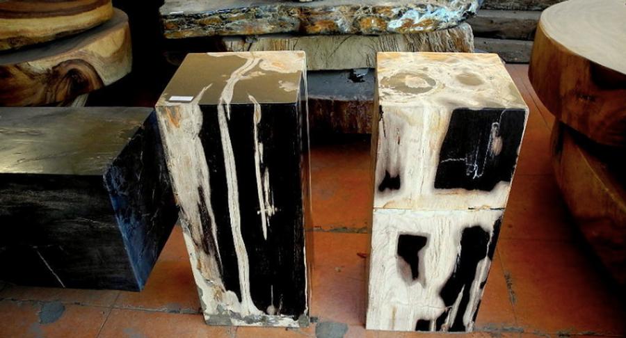 Petrified Wood Pedestals