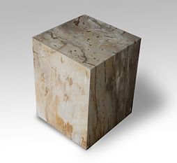 Petrified Wood Square End Table