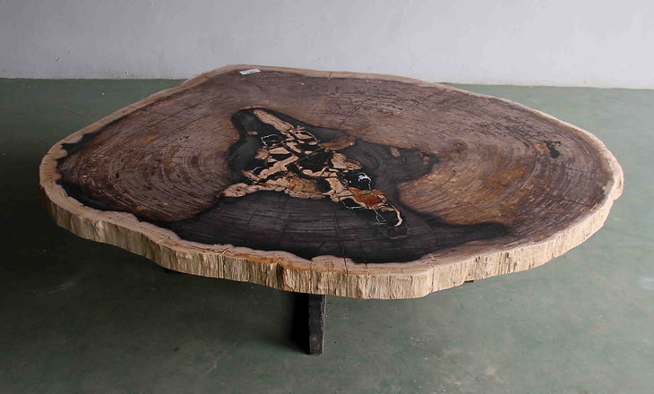 Large Petrified Wood Slab Coffee Table