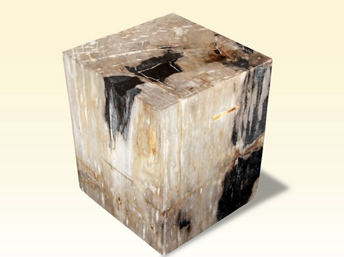 Petrified Wood Square Side Table