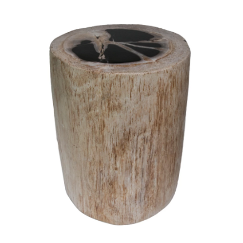 Petrified Wood Stool Full Polished