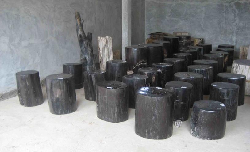 Black Petrified Wood for sale