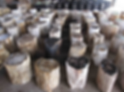 Petrified Wood Stools for sale