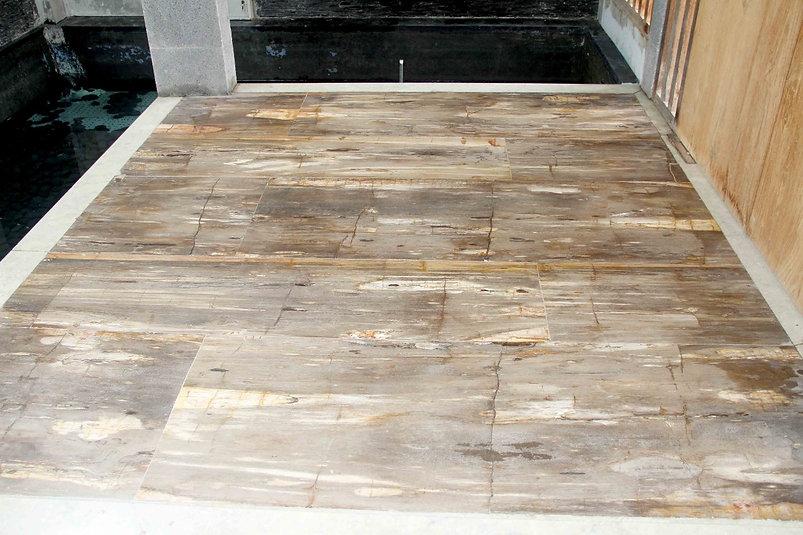 Petrified Wood Beige Tile.jpg