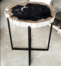 Petrified Wood Slab Side Tables