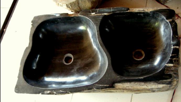 Petrified Wood Double Sink