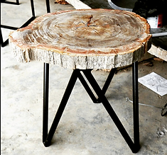 Petrified Wood Slab Table