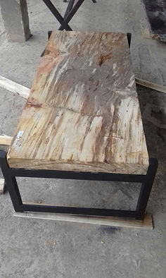 Petrified Wood Coffee Table.jpg