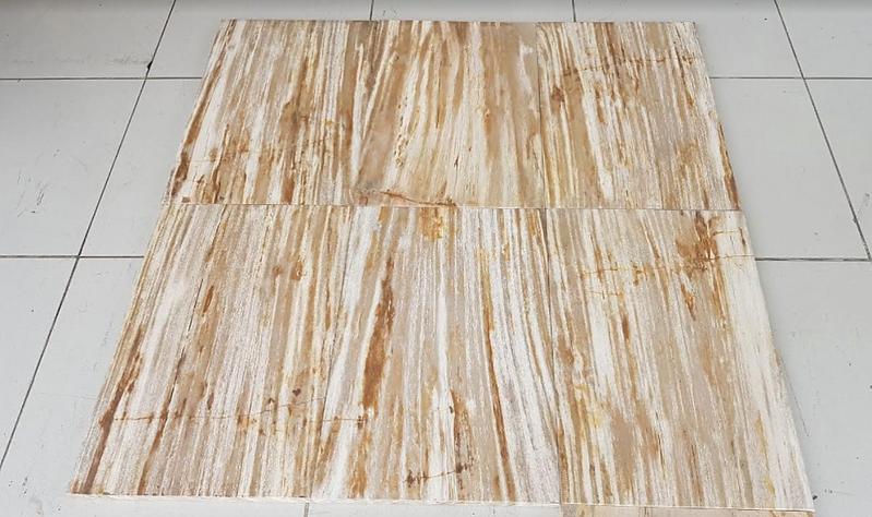 Fossil Floor Tiles