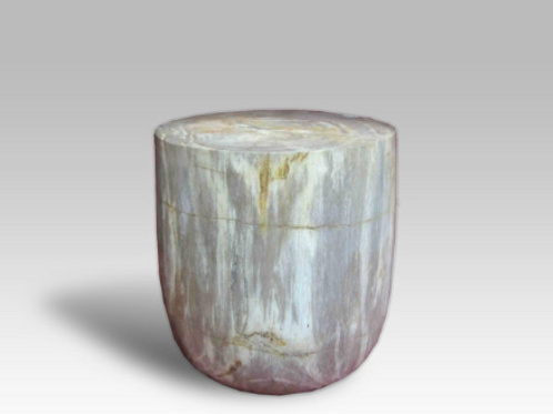 Petrified Wood Cup Stool