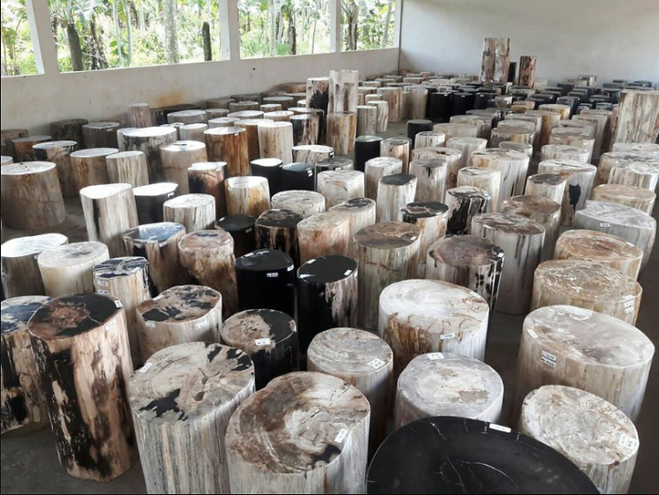 Petrified Wood Stools for sale Indonesia