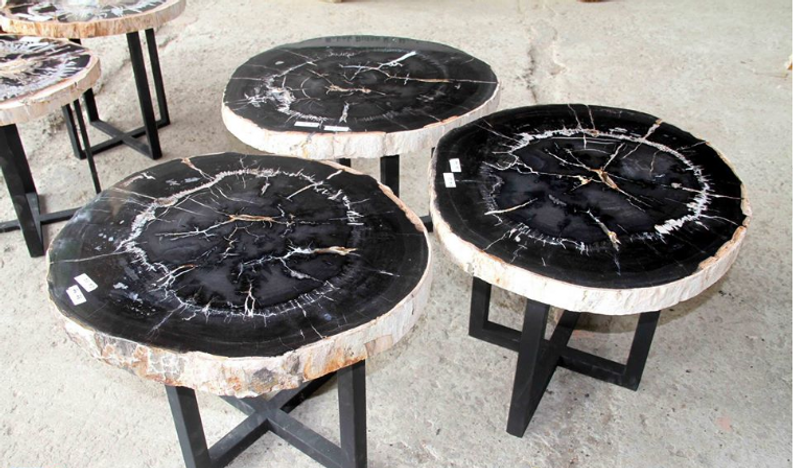 Petrified Wood Occasional Tables