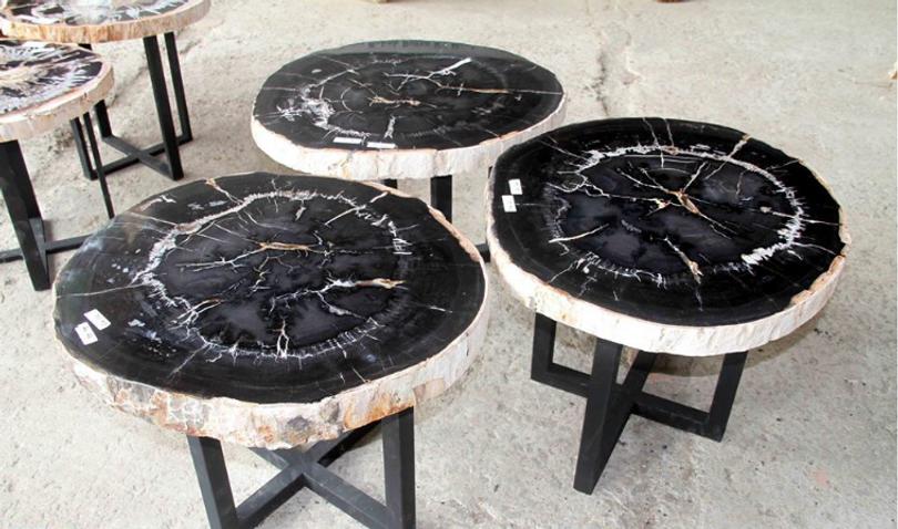 Black Petrified Wood Coffee Table