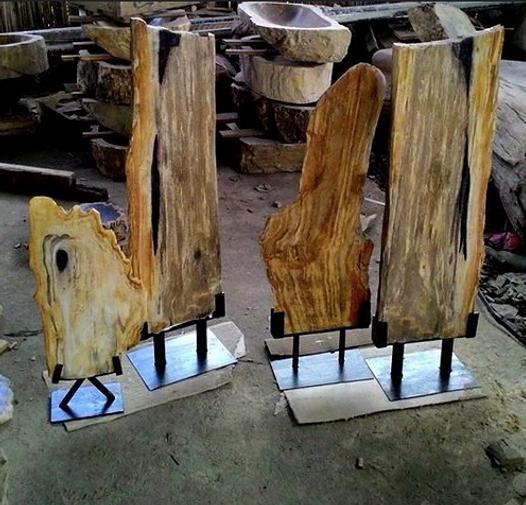 Petrified Wood Art Craft