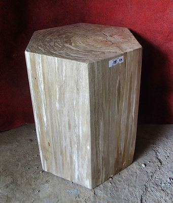 Hexagonal Petrified Wood Side Table.jpg