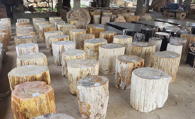 Petrified Wood Stump.png