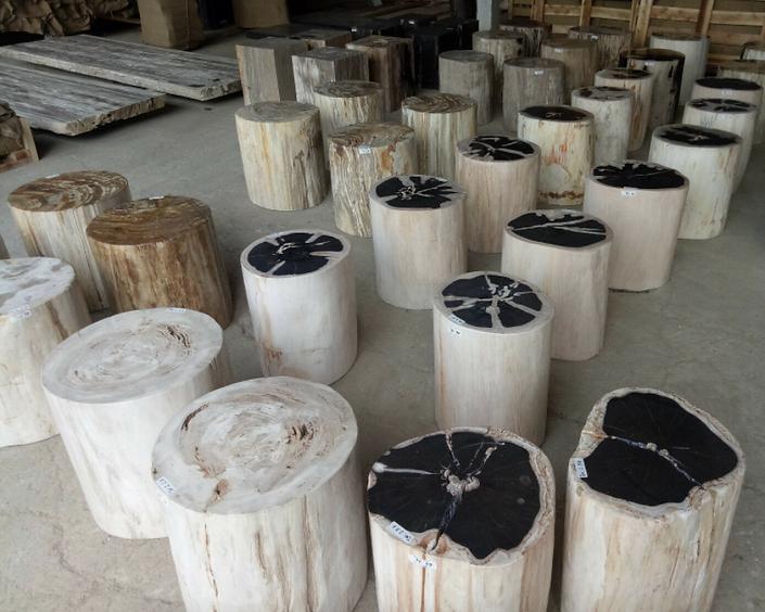 Indonesian Petrified Wood