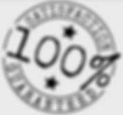 tn_100 Guarantee.png