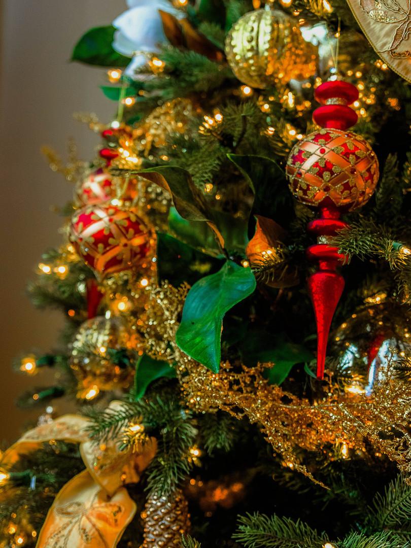 MSH_Christmas-Lights_2019_E2_20.jpg