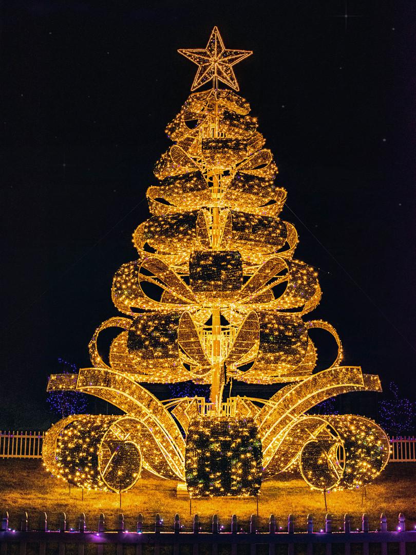 MSH_Christmas-Lights_2019_E2_13.jpg