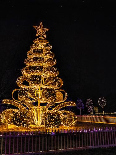 MSH_Christmas-Lights_2019_E2_16.jpg