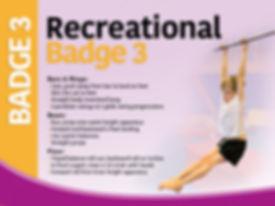 Badge 3.jpg