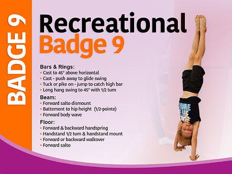 Badge 9.jpg