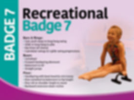 Badge 7.jpg