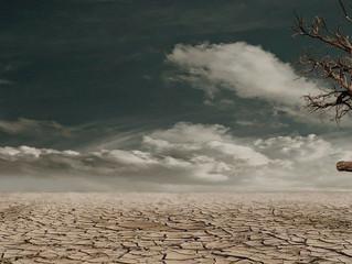 Deserto, o lugar do essencial
