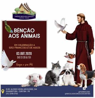 Paróquia Imaculada Conceição convida população para bênção aos animais neste sábado