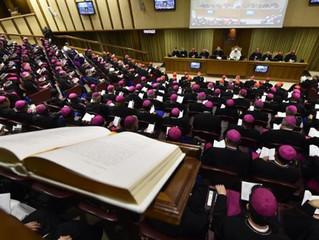 Sínodo dos Bispos: devemos pedir perdão aos jovens