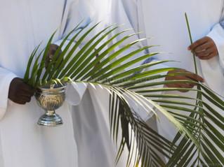 A importância do Domingo de Ramos