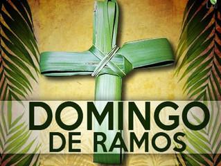 Preparação para o Domingo de Ramos