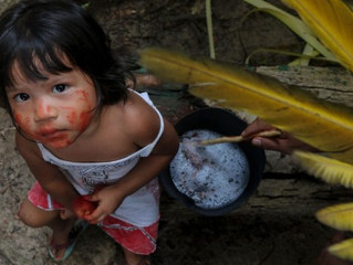 Grito da terra e dos pobres na Amazônia chega ao limite, denuncia Pe. Dario Bossi