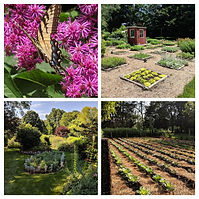4 Gardens.jpg