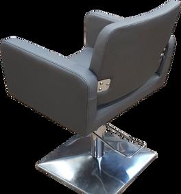 Hairdresser Chair Back