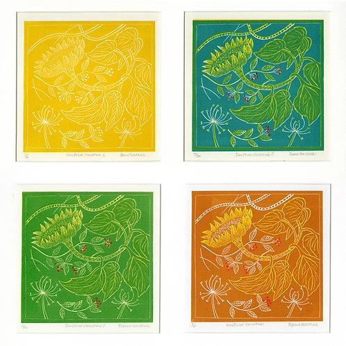 Elaine Marshall- Sunflower Variations