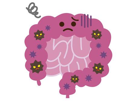 ウイルスに負けない身体づくり!免疫と腸の関係性②