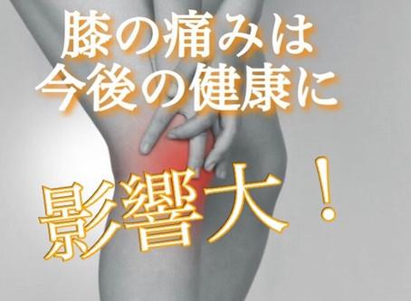 """【健康の秘訣は""""膝""""にある⁉️】"""