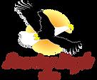 美国Soaring Eagle Ziplines
