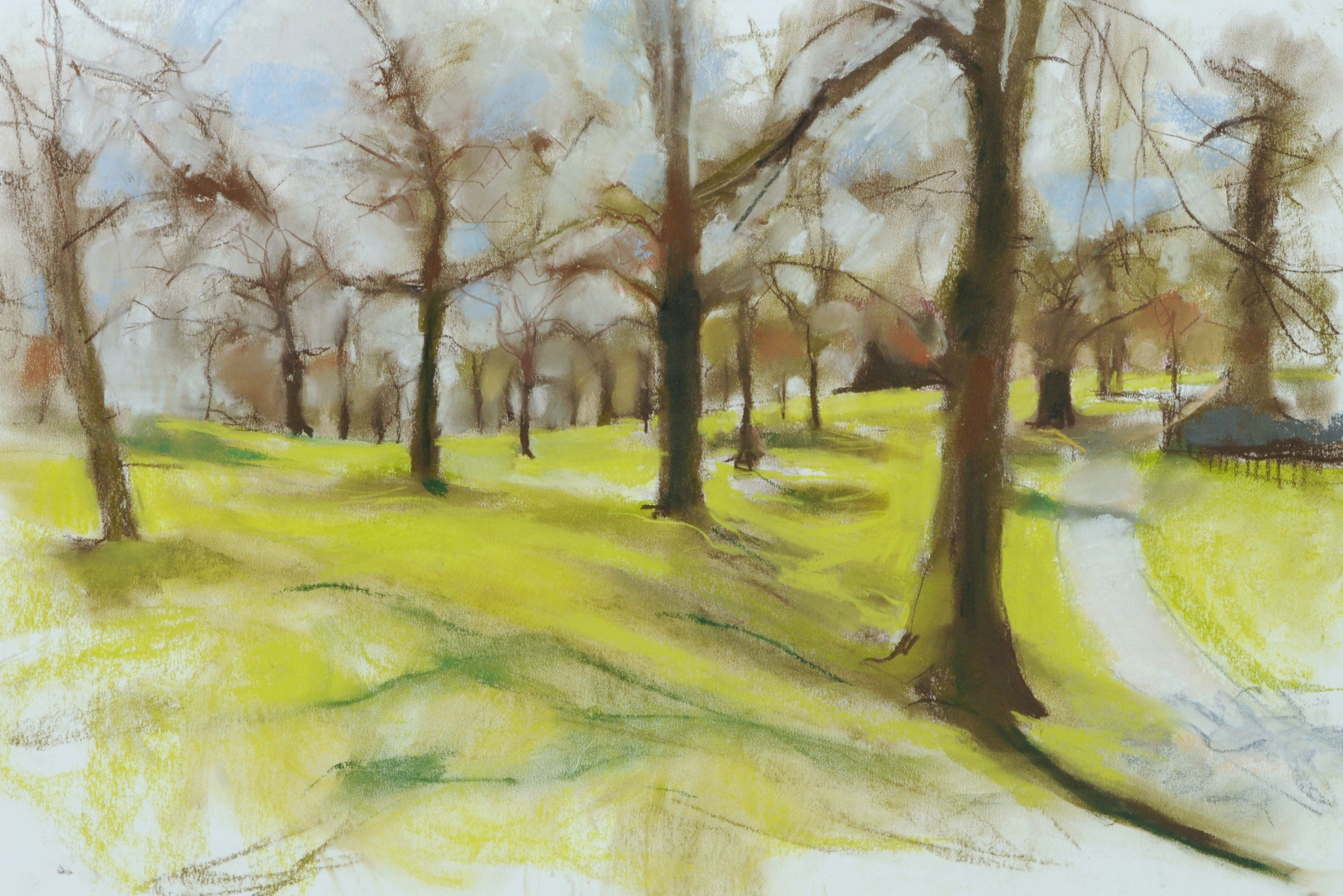 Greenwich Park Trees