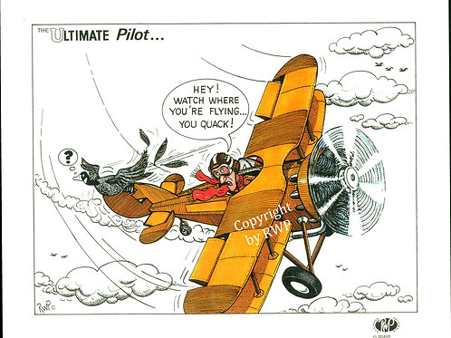 The Ultimate Pilot B