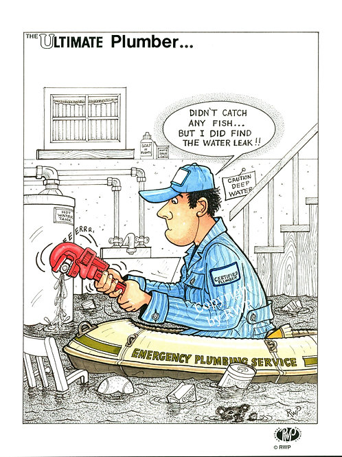 The Ultimate Plumber