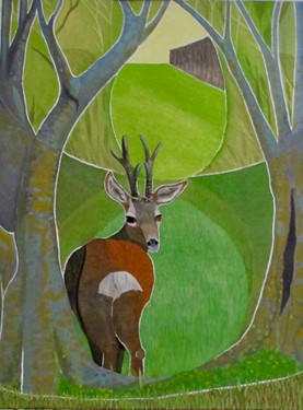 Rusper Buck