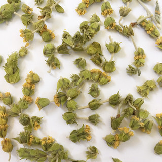 eoswellbeing Greek herbal organic tea mountain tea