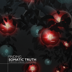 Truth Set Cover